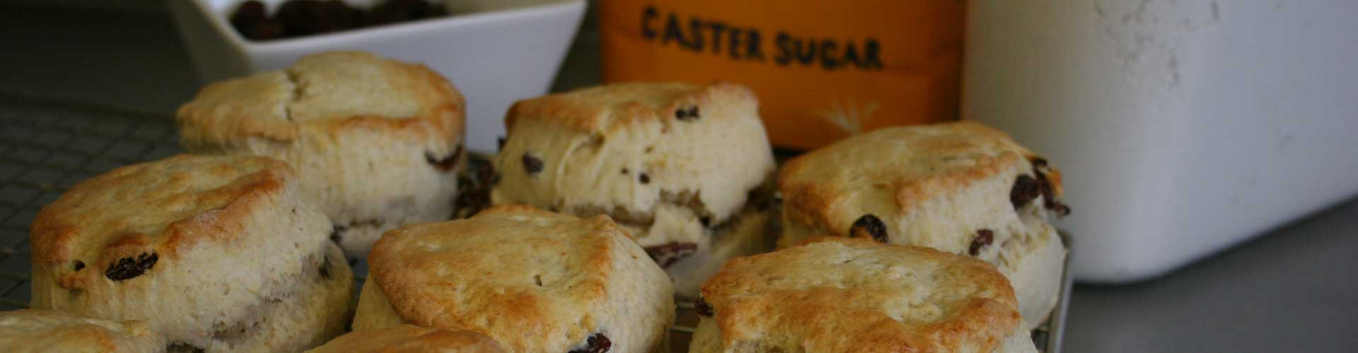 Picture of Freshly Baked Scones at Shawbury Garden Centre Cafe